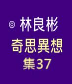奇思異想 集37  ◎林良彬 - 台灣e新聞