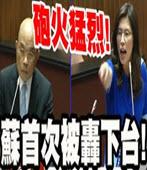 鄭麗文砲打蘇光頭 -台灣e新聞