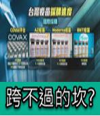 跨不過的坎? 疫苗跳過代理商 恐面臨法律訴訟!- 台灣e新聞