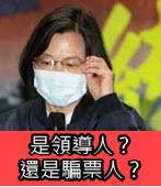 是領導人?還是騙票人?- 台灣e新聞