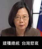 「政治碰瓷」入民於罪!-台灣e新聞