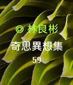 奇思異想集59  ◎林良彬-台灣e新聞