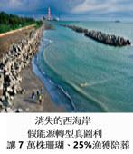 消失的西海岸|【深度調查】 假能源轉型真圖利,竟讓7萬株珊瑚、25%漁獲陪葬!- 台灣e新聞