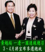 黃越綏:3、4月將宣布參選總統 |台灣e新聞