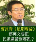 蔡英文要把民進黨帶到哪裡?/ 曹長青星期專論