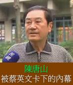 陳唐山被蔡英文卡下的內幕