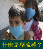 豬流感是什麼症狀?你要注意哪些事項?