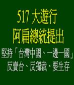 有關517大遊行陳前總統提出「一個堅持、三大訴求」