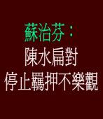 蘇治芬:陳水扁對停止羈押不樂觀