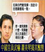 中國官員武嚇 蕭美琴揭其醜態