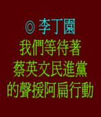 蔡英文民進黨﹕期待看妳們的聲援阿扁行動 ◎李丁園