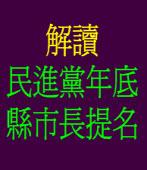 解讀民進黨年底縣市長提名 ◎林嘉宜