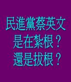 民進黨蔡英文是在紮根?還是拔根?