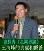 《星期專論》王清峰的真瘋和偽善