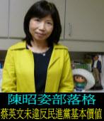 陳昭姿:蔡英文未違反民進黨基本價值