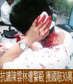 抗議陳雲林遭警毆 獲國賠30萬