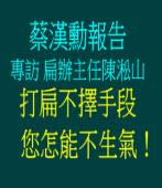蔡漢勳報告: 訪扁辦主任陳淞山//又見打扁賤招/◎ 陳淞山