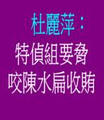 杜麗萍:特偵組要脅咬陳水扁收賄