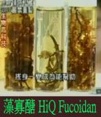 藻寡醣 HiQ Fucoidan