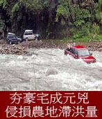 《聯合報社論》潑辣的鯰魚:豪宅侵損農地滯洪功能