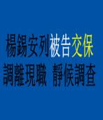 楊錫安列被告交保 調離現職 靜候調查