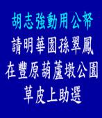 胡志強動用公帑請明華園孫翠鳳在豐原葫蘆墩公園草皮上助選