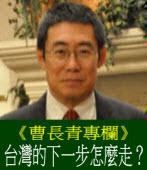 《曹長青專欄》台灣的下一步怎麼走?