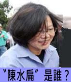 〝陳水扁〞是誰?