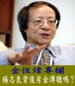 《金恆煒專欄》楊志良背後有金溥聰嗎? |台灣e新聞