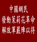中國網民發動茉莉花革命茉莉花革命解放軍嚴陣以待|台灣e新聞