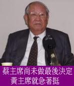 蔡主席尚未做最後決定 黃主席就急著挺|台灣e新聞