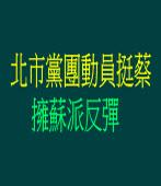 北市黨團動員挺蔡 擁蘇派反彈 |台灣e新聞
