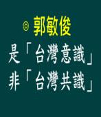 是「台灣意識」非「台灣共識」 |◎ 郭敏俊|台灣e新聞