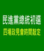 民進黨總統初選  四場政見會時間敲定|台灣e新聞
