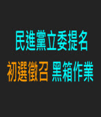 民進黨立委提名 初選徵召黑箱作業|台灣e新聞