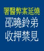署醫弊案延燒 邵曉鈴弟收押禁見 |台灣e新聞