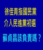 徐佳青指國民黨 介入民進黨初選  蘇貞昌該負責嗎?|台灣e新聞