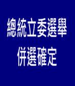 總統立委選舉 中選會:併選確定 |台灣e新聞