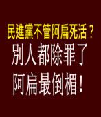 特別費除罪化 見證司法不公|台灣e新聞