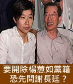 要開除楊蕙如黨籍,恐先問謝長廷?∣◎jt∣台灣e新聞