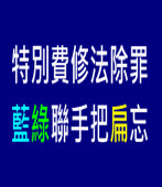 特別費除罪,藍綠聯手把扁忘 |台灣e新聞