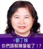 你們誤解陳肇敏了!?∣◎劉丁妹|台灣e新聞