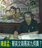 陳師孟:蔡英文與馬英九何異?|台灣e新聞