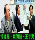民進黨柯建銘、蔡同榮、王幸男∣台灣e新聞