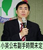 陳其邁:小英公布副手時間未定|台灣e新聞