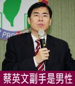 延後出爐製造高潮 陳其邁:蔡英文副手是男性|台灣e新聞
