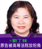 原告被高等法院放粉鳥(鴿子)  |◎ 劉丁妹 |台灣e新聞