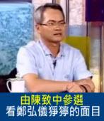 由陳致中參選,看鄭弘儀猙獰的面目|台灣e新聞