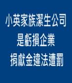 小英家族潔生公司是虧損企業 捐獻金違法遭罰|台灣e新聞