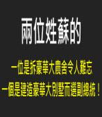 兩位姓蘇的,一位是拆豪華大農舍令人難忘;一個是建造豪華大別墅而選副總統!|台灣e新聞